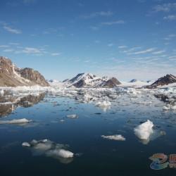 北极三团精彩图片