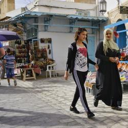 颜国良:突尼斯