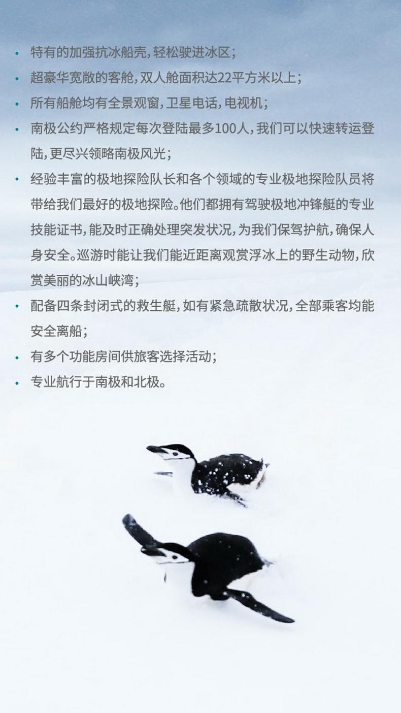 王企鹅探索之旅-42