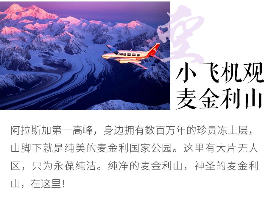新版详情页竖版(dianshangban)_06.jpg
