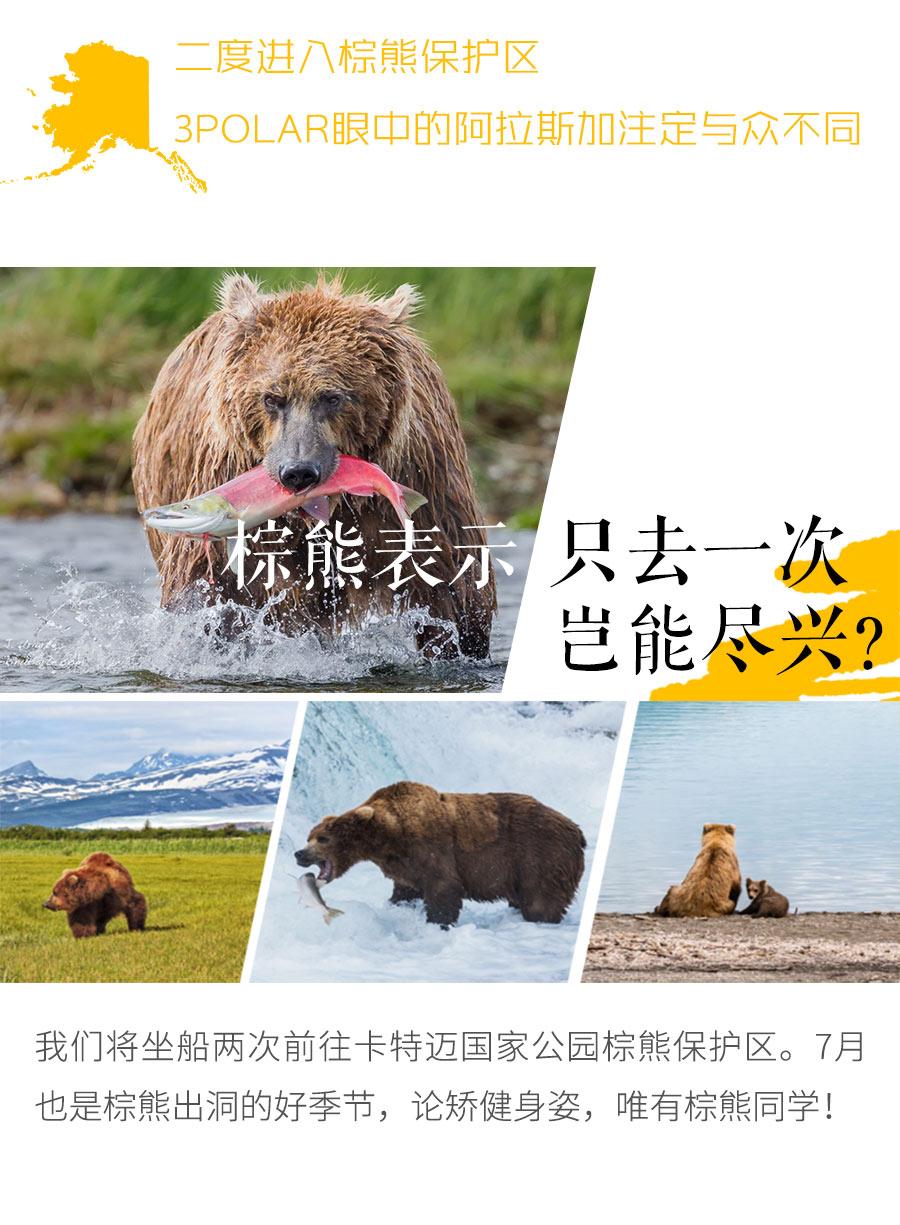 新版详情页竖版(dianshangban)_07.jpg