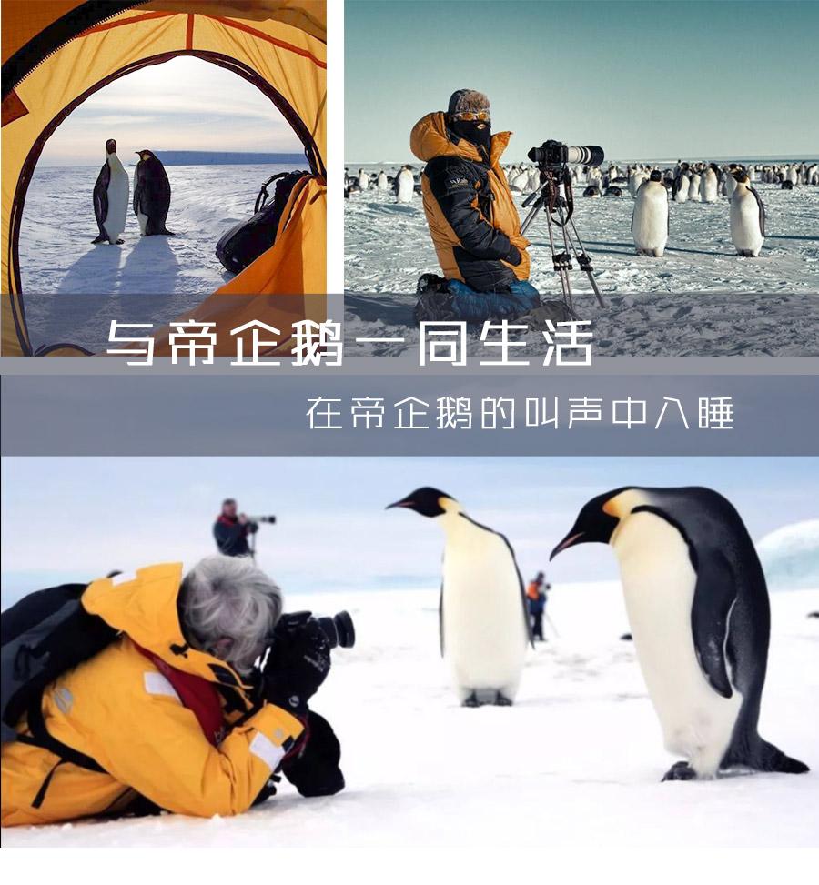 南极点详情页_09.jpg